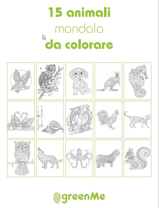 Album da colorare bambini disegni animali mandala pdf