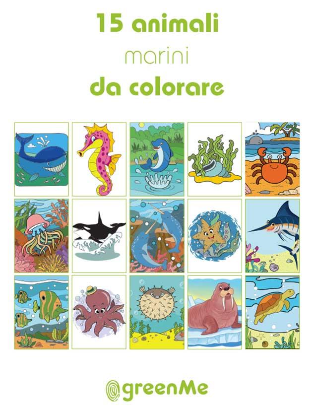 Libro da colorare bambini disegni Animali marini pdf